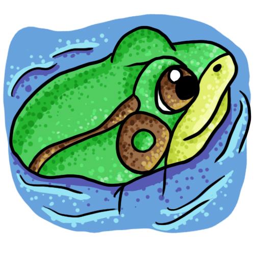 Frog Cliip Art 20