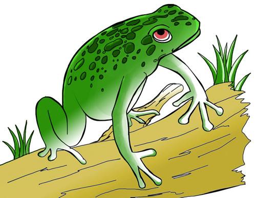 Free frog clip art to download frog 13 voltagebd Images