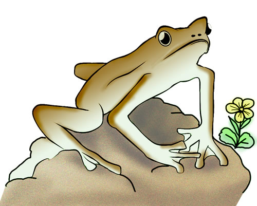 Free Frog Clip Art To Download Frog 19 Pictures to pin on Pinterest
